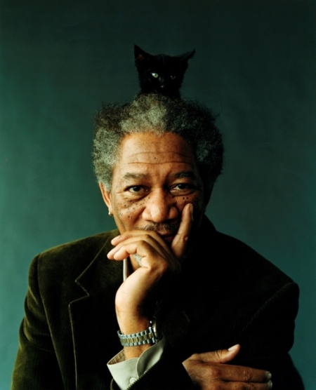 Freeman Kitty